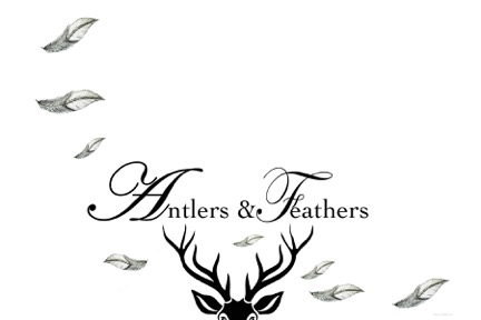 Antlers & Feathers